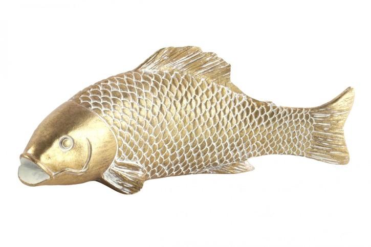 Fisch Anando S gold